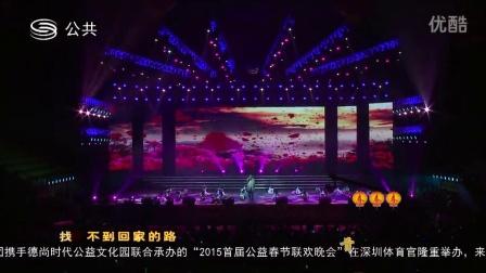 亚洲风2015首届公益春晚——歌伴舞守护童年—好声音著名歌手丁克森