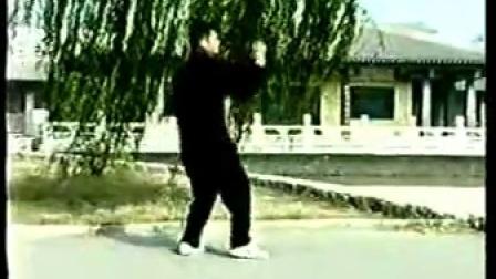 杨氏快架、炮锤、八卦掌