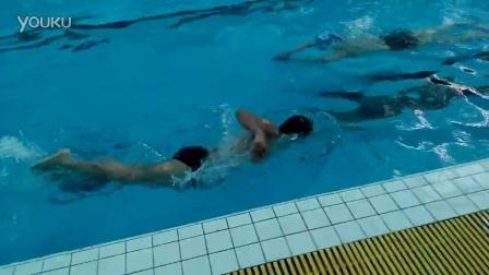学习自由泳之路