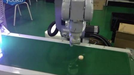 6R机器人视觉跟踪及检测