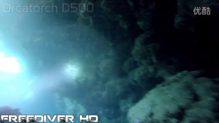 Scuba - Freedive flashlights - Orcatorch D550, D500, D500V