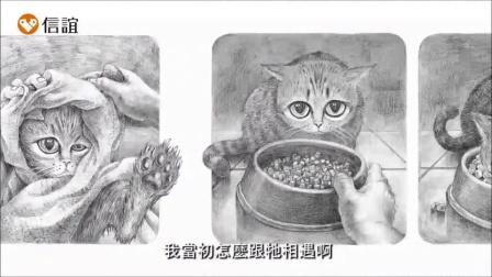 第四届「丰子恺儿童图画书奖」入围作品—作绘者介绍《寻猫启事》
