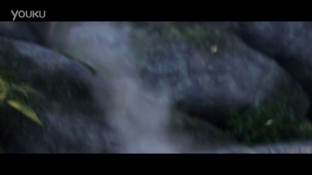 《西游记之大圣归来》30秒角色版预告