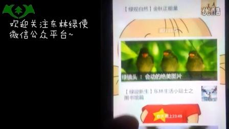 东林绿使2014年招新宣传
