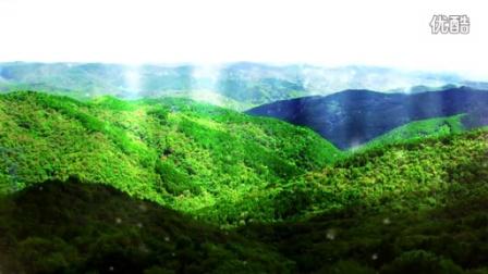 林业系统高品质晚会视频包装—第三篇章《生态文明绿色梦》