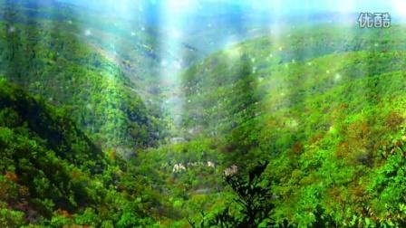 林业系统高品质晚会视频包装—第二篇章效果《深情守望子午岭》