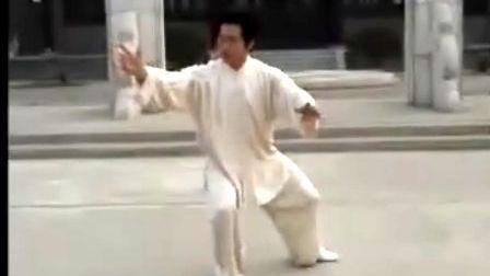 韩清民85式杨式太极拳(第2段)