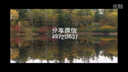 红尘情歌-紫斛分享