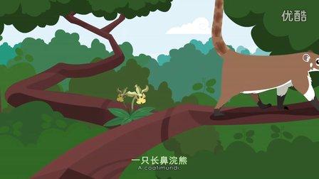 红树林儿童动画开始《漫游红树林》#CMCN字幕#