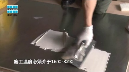 雷帝300环氧胶粘剂     LATAPOXY 300 Adhesive
