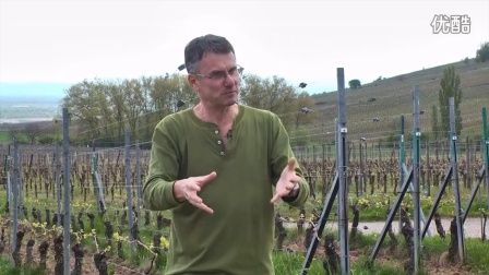 Alsace_ Domaine Hugel et Fils - Alsace's Geological Diversity