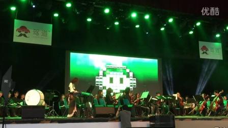 VGL 2015 大小姐 ZETA 电子琴