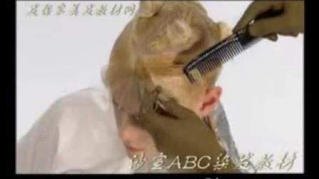 沙宣ABC染发(九)