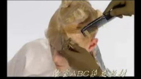 沙宣ABC染发(六)