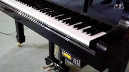 DSC_0577 贝伦斯自动演奏系统
