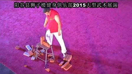 2015阳谷县狮子楼俱乐部传统武术展演_4
