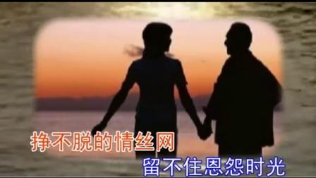 502 MV挥不去的伤(柴一艺孟宪东作品)2
