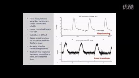 Measuring Force in Single Heart Cells单细胞张力与长度同步测量系统