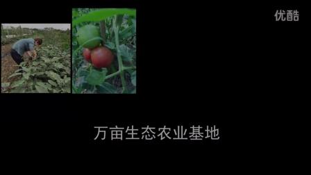 无锡双子楼大酒店形象宣传片
