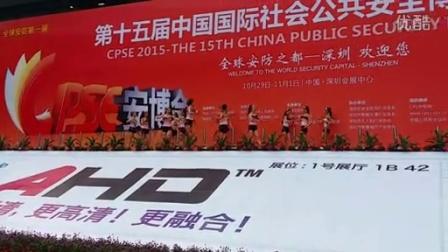 2015中国公共安防展 CPSE