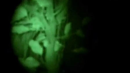 OdePro 奥德宝一代+红外微光夜视仪RG 85-5