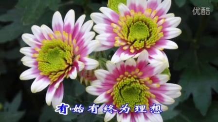 花漫湖熟·魅力菊镇