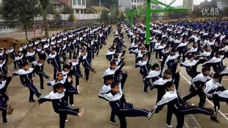 浏阳市澄潭江中学231班武术操视频