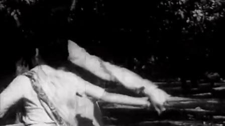 戴维达斯Devdas 1955歌舞一 我为&卿狂字幕组