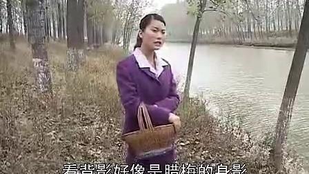 沂蒙小调【苦腊梅】第一集