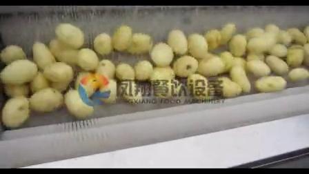 土豆连续清洗脱皮抛光 potato peeling+polishing