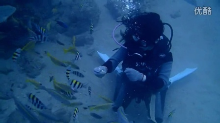2015.12.10一位初體驗潛水