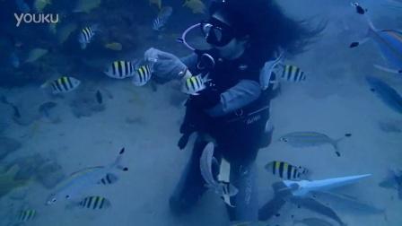 2015.12.10一位初體驗潛水2