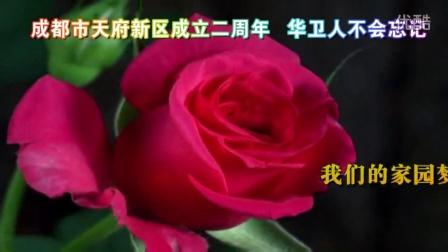 华卫年会001上场视频[新视听演艺传媒出品]