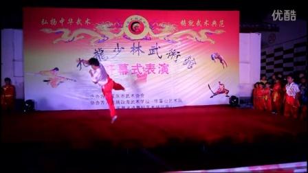 武术表演醉剑 九龙少林武术馆 寒假班春季班火热报名中 点击观看视频