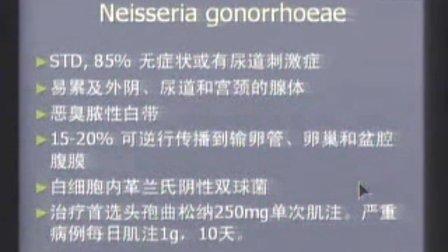妇产科学 女性生殖系统炎症