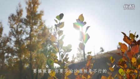 35-治沙英雄石光银-西部网