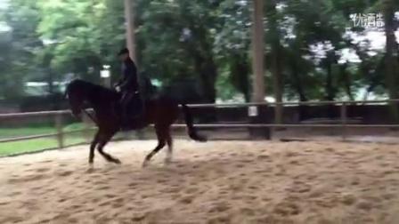 20160122骑马视频