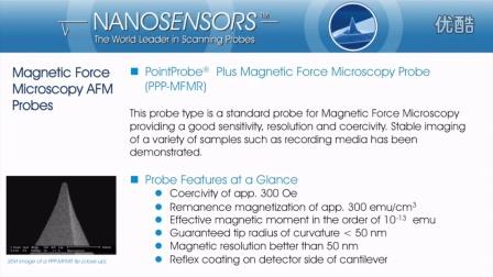 磁力显微镜探针 MFM