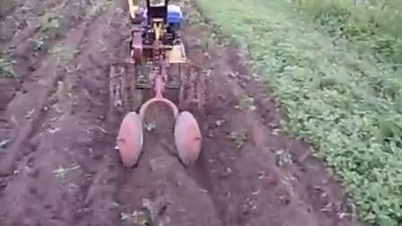 小型马铃薯起垄机-5
