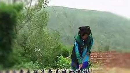 彝族歌曲   母亲