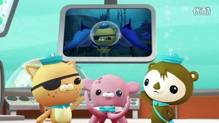 【海底小纵队 英文儿歌】海底报告之剑鱼Octonauts  Creature Reports - Swordfish