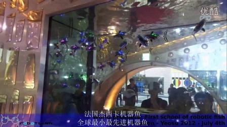 杰西卡机器鱼视频7