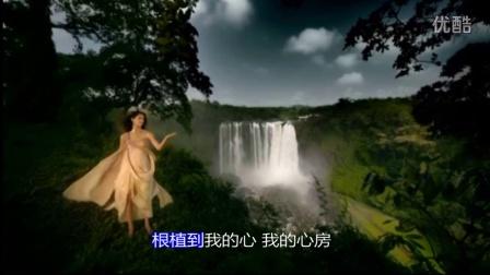 僖僖《霞光》MV(唯美版)