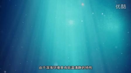 蕾萨蒂姿海洋深层水介绍