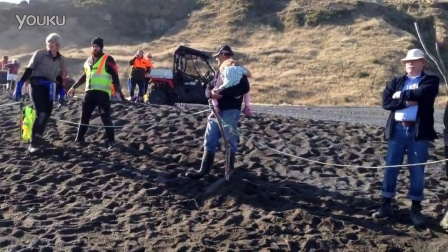 新西兰人拯救搁浅的柯氏喙鯨