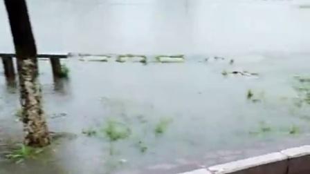 QQ短视频20160510110647发大水