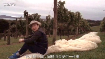 2016 WINE100葡萄酒大赛评委 — 万雨农