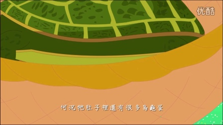 【爱护生命的故事】杀龟的怨气【421】