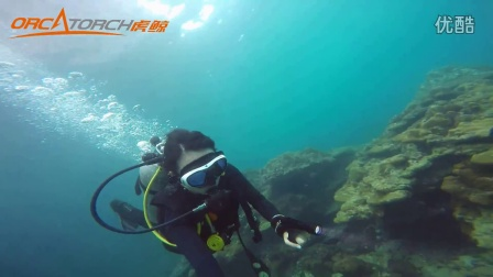 虎鲸OrcaTorch:自由潜水测评水下强光手电筒