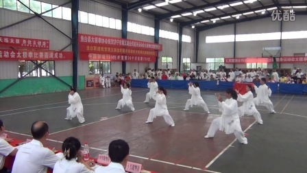 2015年太极拳比赛鱼台陈氏太极拳队